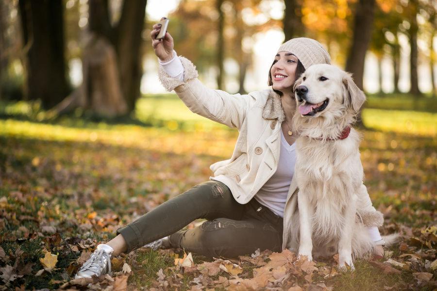 Schudnúť chôdzou so psom