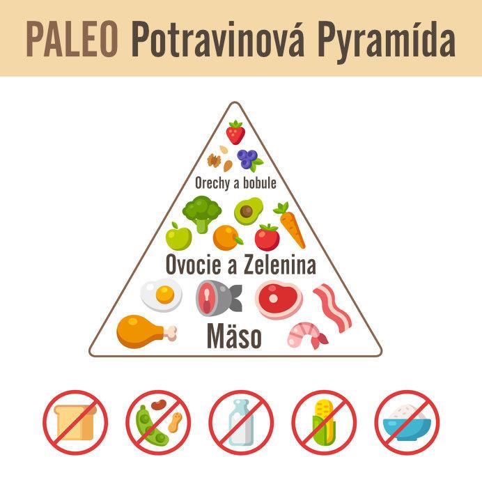 Paleo potravinová pyramída