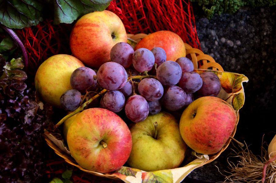 Ovocie , sušičky odšťavovače