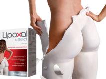 Lipoxal Effect-banner