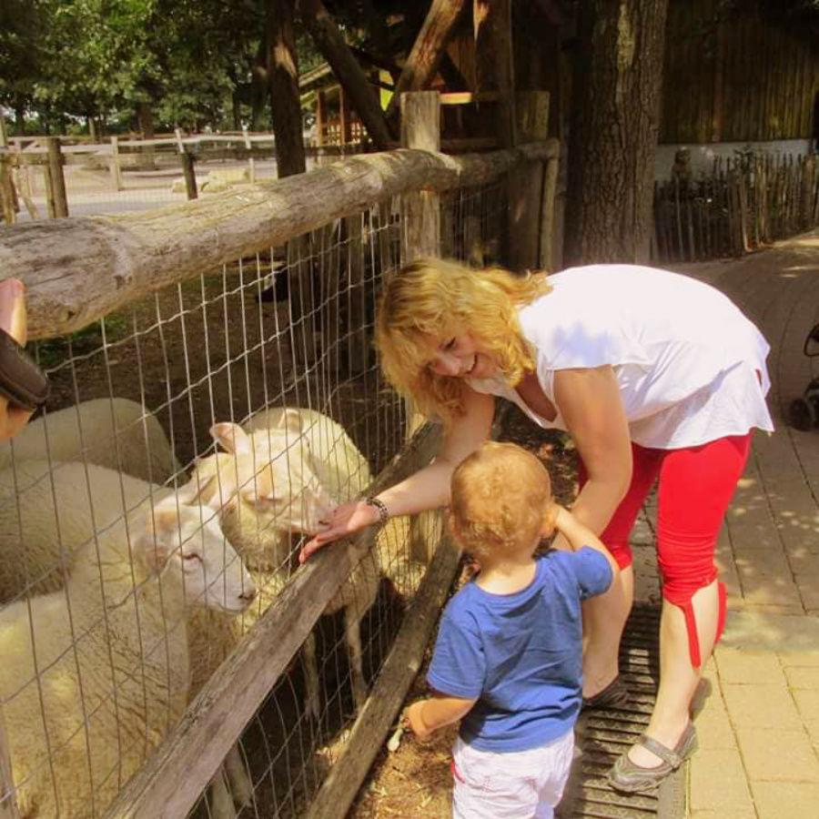 Menopauza, vložky a ovečky