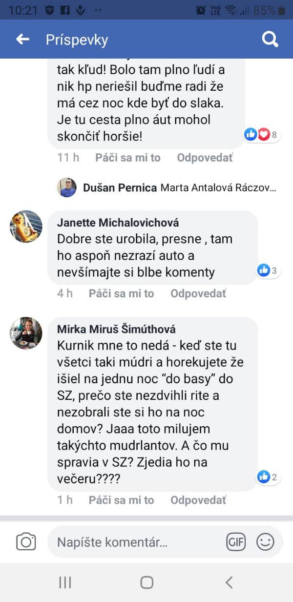 Stratený psík FB komentáre
