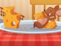 Myška a syr