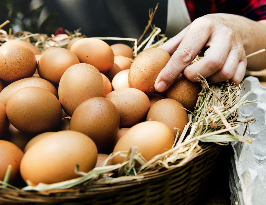 Košík s vajcami