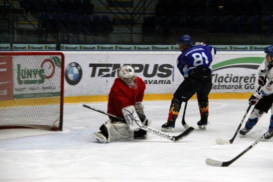 Hokej, zápas, brankár