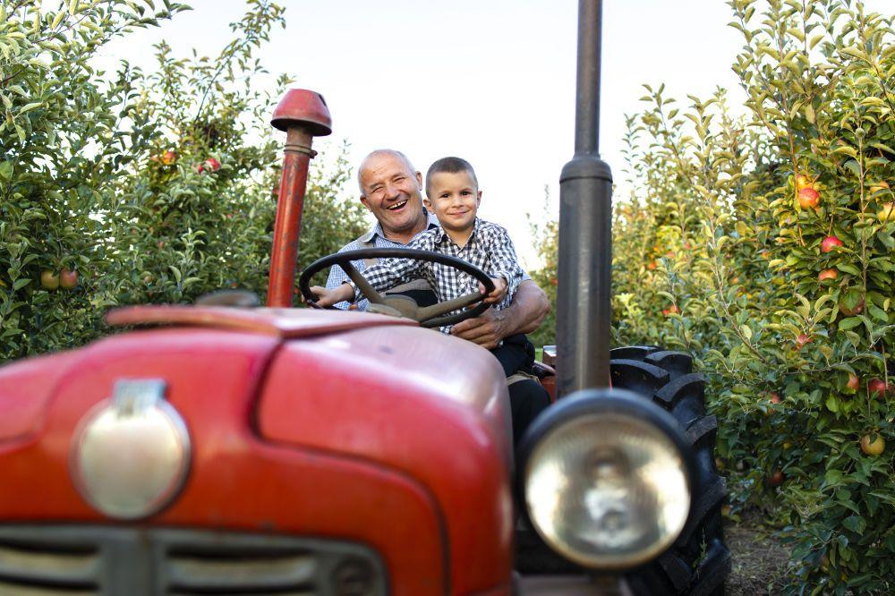 Maly farmár, chlapec a traktor v sade pestujú kvalitné zdravé potraviny bez obalu